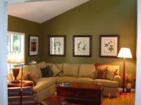 Olive green walls, Olive green and Green walls on Pinterest