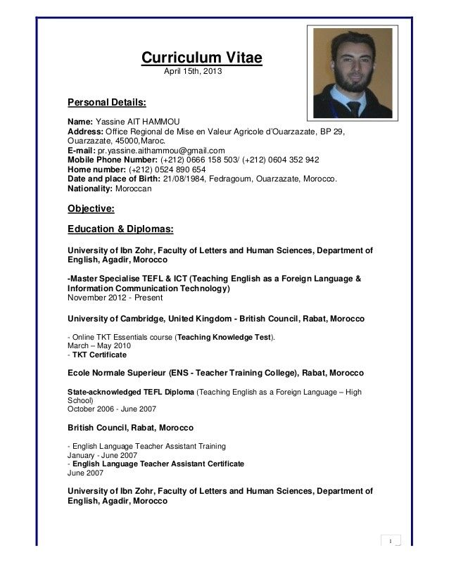 resume computer skills mac and pc