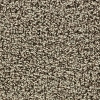 60 best images about Best Cheap Carpet In Dallas on Pinterest