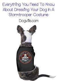 844 best images about Dog Costumes on Pinterest ...