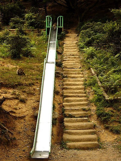 629 best images about Hillside Steps Ideas on Pinterest