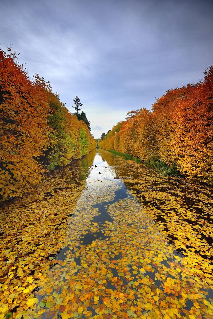 Danzig Wallpaper Hd Park In Gdansk Oliwa Autumn In Poland By Mirek