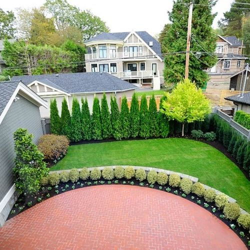 25+ best ideas about Privacy Landscaping on Pinterest