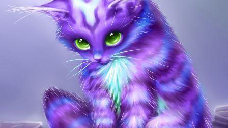 Free Fall Halloween Wallpaper Fantasy Kitty Coat Purple Cat Eyes Abstract Hd Wallpaper