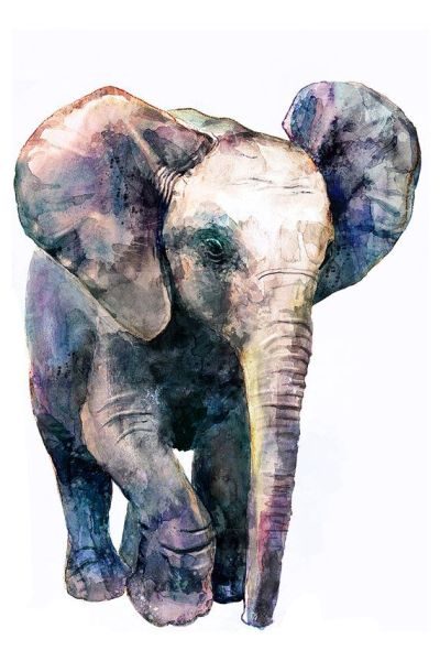 17 Best ideas about Elephant Phone Wallpaper on Pinterest | Elephant wallpaper, Elephant ...
