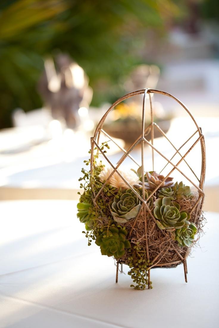 Deanna moore design wire baskets succulents spanish moss wedding centerpiece