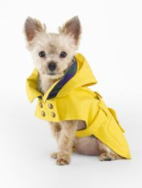 1000+ ideas about Dog Raincoat on Pinterest | Cute dogs ...