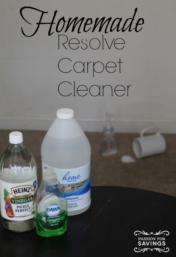 1000+ Ideas About Homemade Carpet Cleaners On Pinterest   Natural