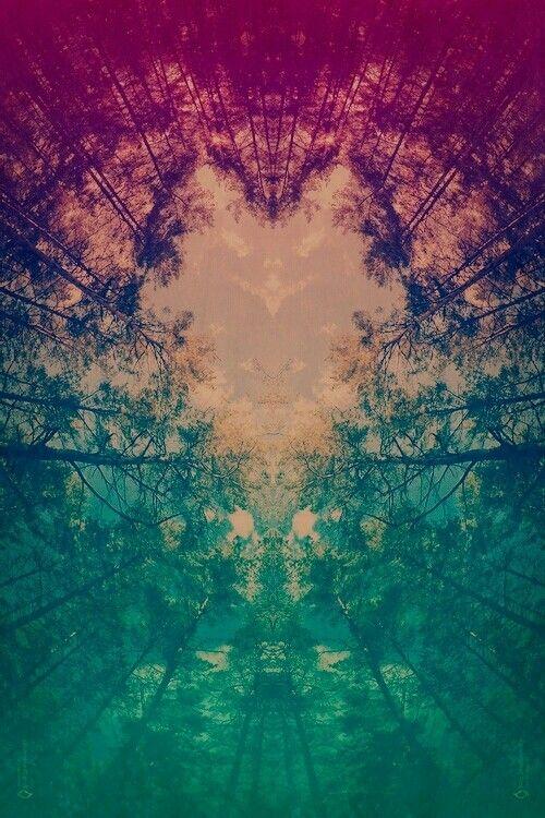 Iphone 4 Heart Wallpaper Bosque Corazon Wallpaper Hipster Girl Wallpaper