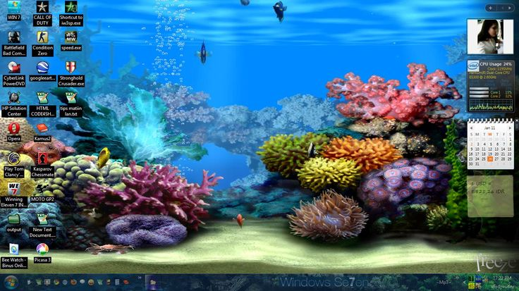3d Animated Wallpaper For Windows 7 Ultimate Free Download Free 3d Sound Desktop Moving Background Living Dolphins