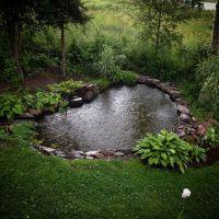 garden pond + hostas | Envy | Pinterest | Gardens ...