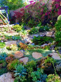 25+ best ideas about Succulent rock garden on Pinterest ...