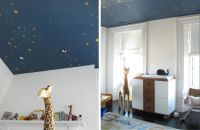 25+ best ideas about Starry Ceiling on Pinterest | Ceiling ...