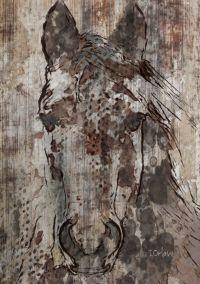 Best 20+ Horse wall art ideas on Pinterest | Art wall kids ...