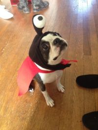 Louies Nibbler costume My people live long and are ...