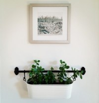 Ikea fintorp rail used to hang plants on the wall ...