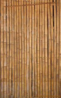 Bamboo wall texture - http://thetextureclub.com/wood ...