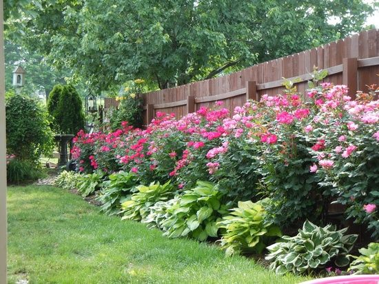 1000+ Ideas About Low Maintenance Landscaping On Pinterest | Low