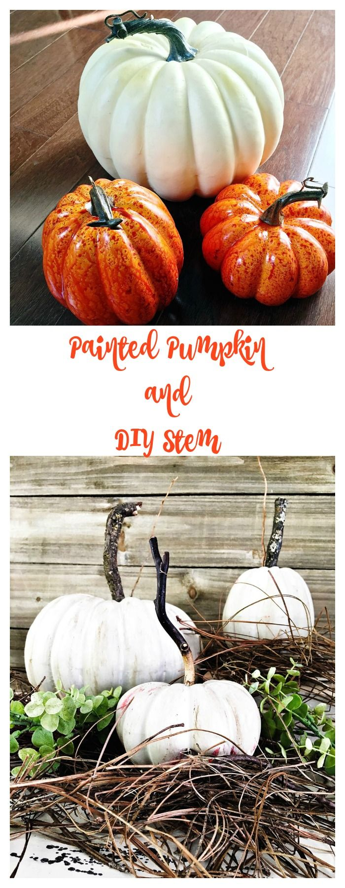 Pumpkin stems for crafts - Pumpkin Stems For Crafts Pumpkin Stems For Crafts 16 Download
