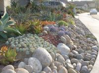 1000+ images about Front Yard on Pinterest