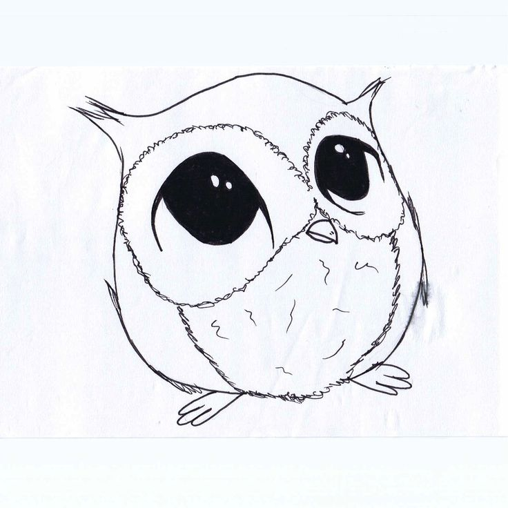 F D Ab F Ff E A Simple Owl Drawing Simple Cute Drawings
