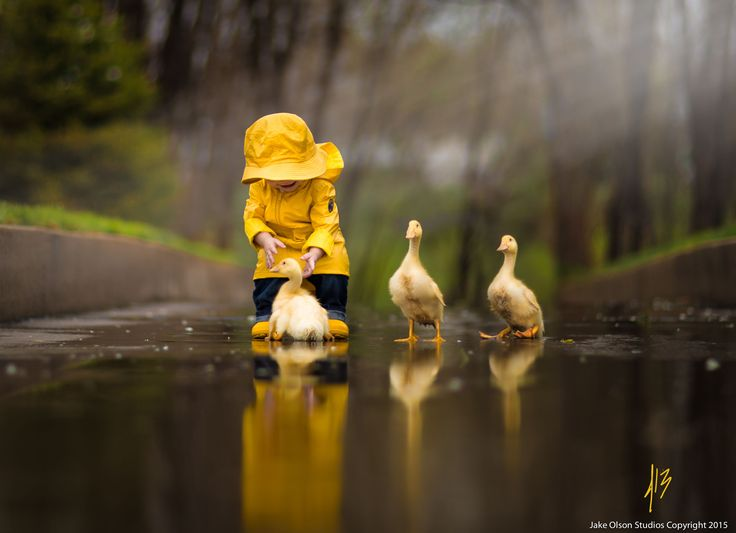 Cute Rainy Weather Wallpapers Rainy Day Friends By Jake Olson Studios On 500px Cute