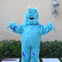 25+ best ideas about Sully costume on Pinterest | Disney ...