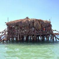 836 best Jamaica images on Pinterest