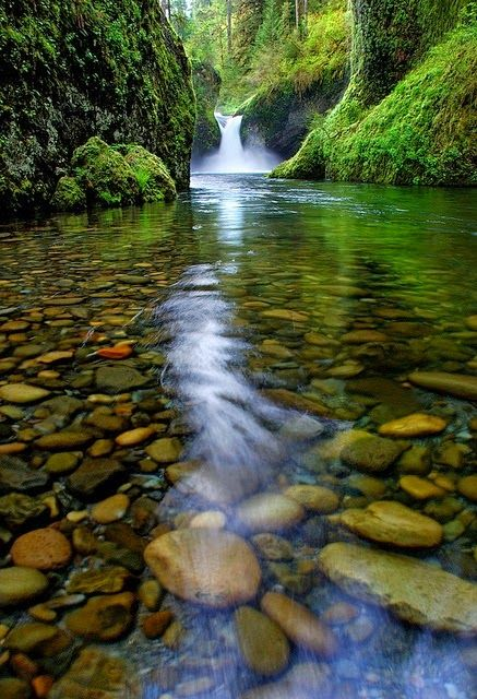 Free Fall Wallpaper For Cell Phones Punch Bowl Falls Is A Waterfall On Eagle Creek In The