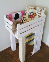 Easy Diy Cat Furniture | www.imgkid.com - The Image Kid ...