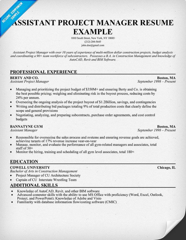 Project Manager Resume Examples Reentering The Workforce Resume - project management resume examples