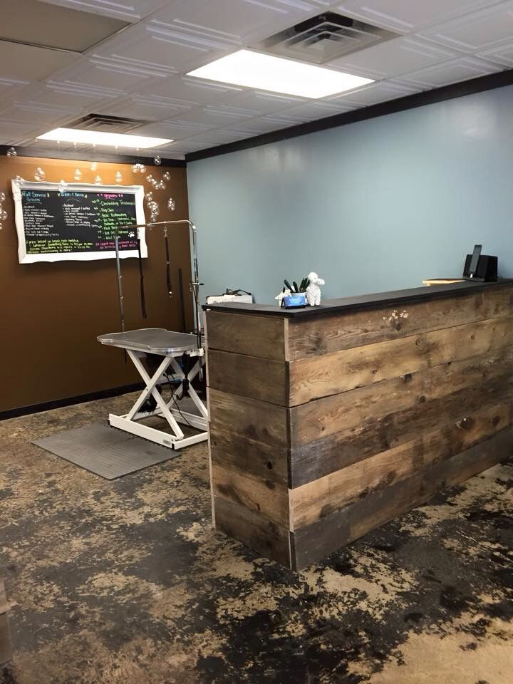 small reception desk for dog grooming shop