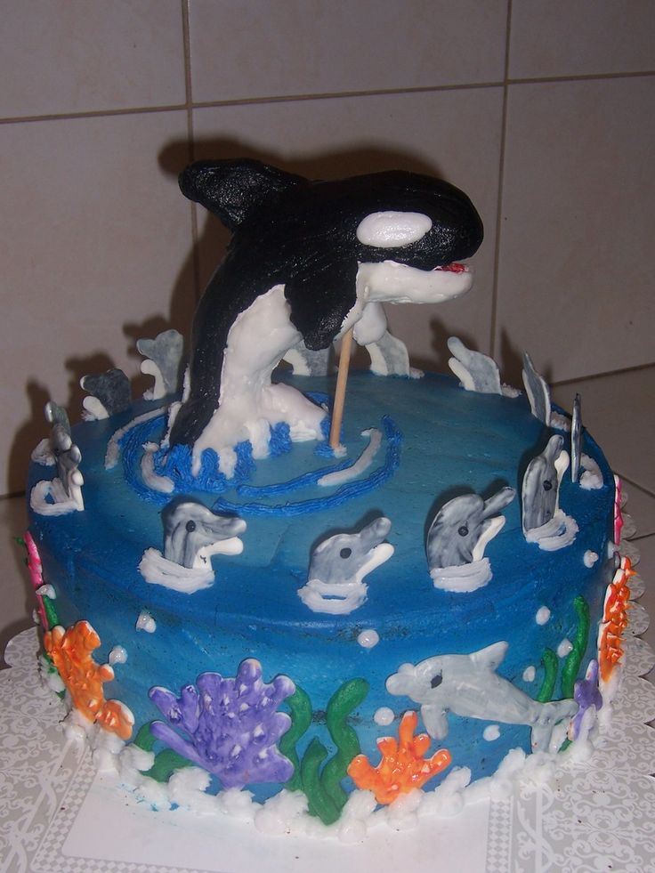 17 best ideas about dolphin birthday cakes on pinterest