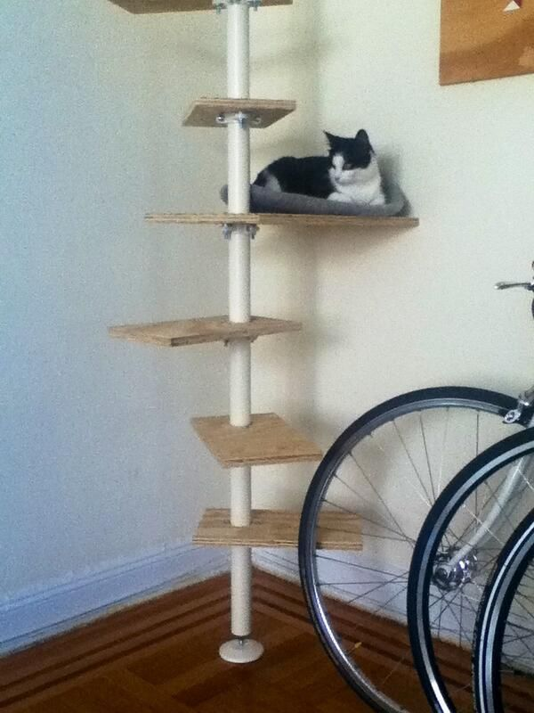 Ikea Cat Tree Ikea Stolmen Cat Tree | Meow | Pinterest | Trees, Cats And