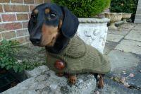 The Highgrove Dachshund Dog Coat | Simply Spiffing ...