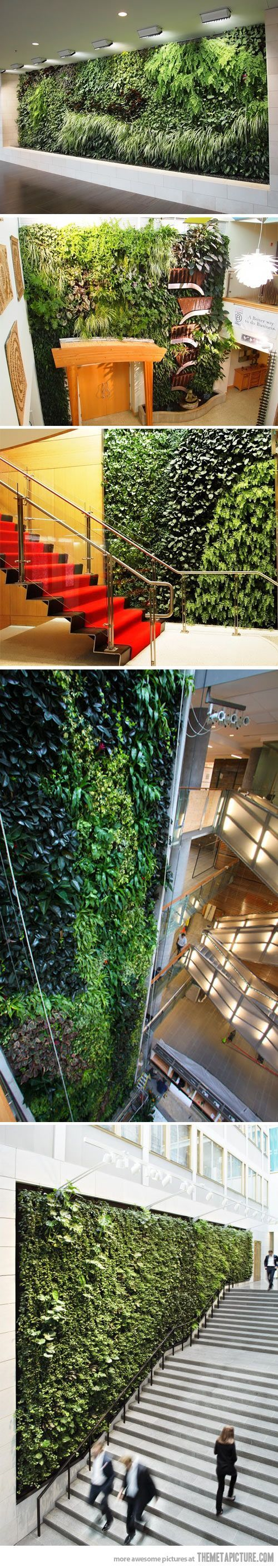 Livewall green wall system make conferences more comfortable - Livewall Green Wall System Make Conferences More Comfortable Living Walls Art Download