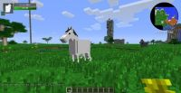 74 best images about minecraft on Pinterest | Toys, Horses ...