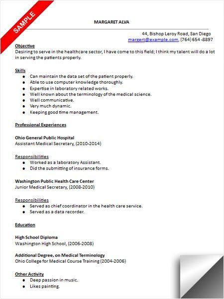 sample resume for secretary in school