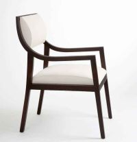 25+ best ideas about Modern dining chairs on Pinterest