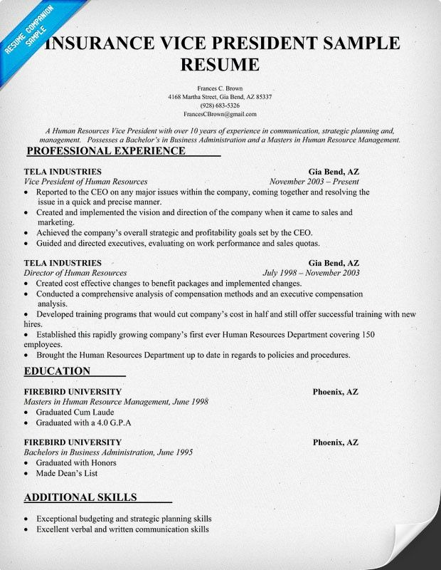 resume examples for vice presidents