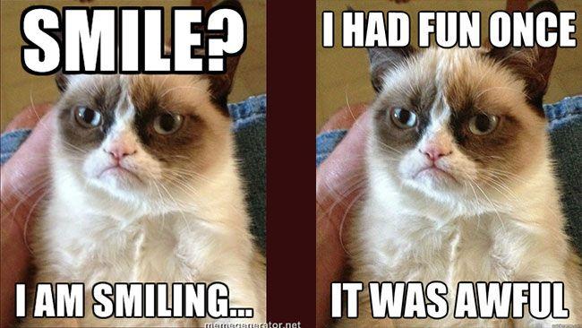 grumpy kitty meme