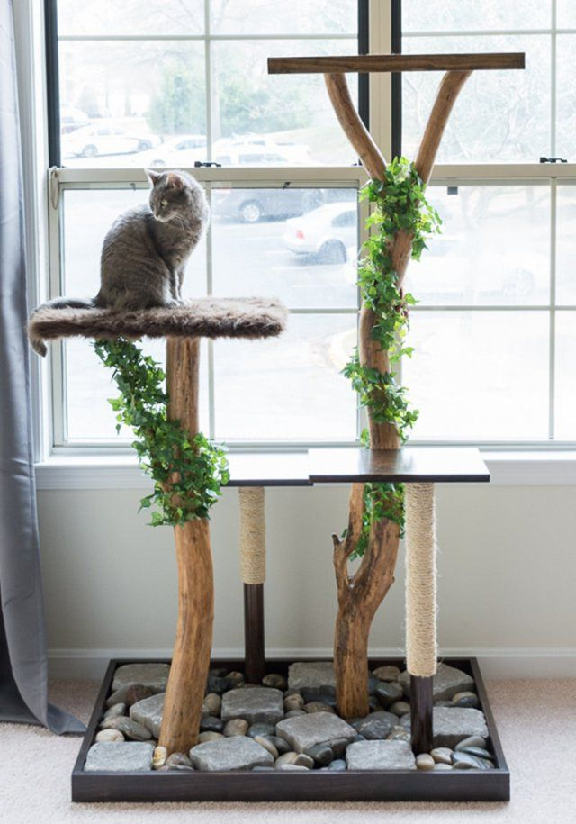 Meuble Litiere Chat Ikea 25+ Best Branches Ideas On Pinterest | Tree Branch Decor