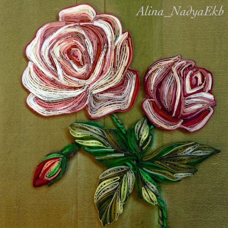25+ best ideas about Quilled Roses on Pinterest