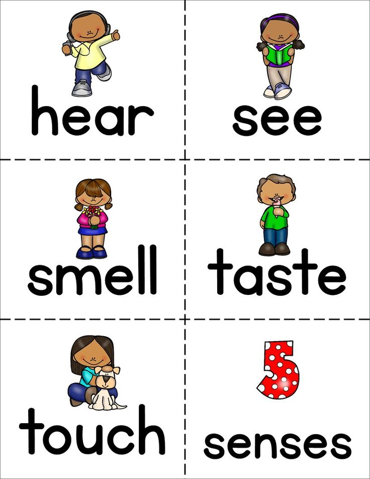 word template flash cards