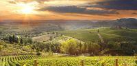 italian countryside - Google Search | Dream Farm | Pinterest