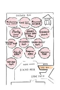 Fruit Orchard Design for Small Spaces - Organic Gardening ...