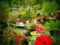 Cedar Lakes Woods and Gardens in beuatiful botanical ...