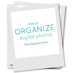 Small Crop Of How To Organize Digital Photos