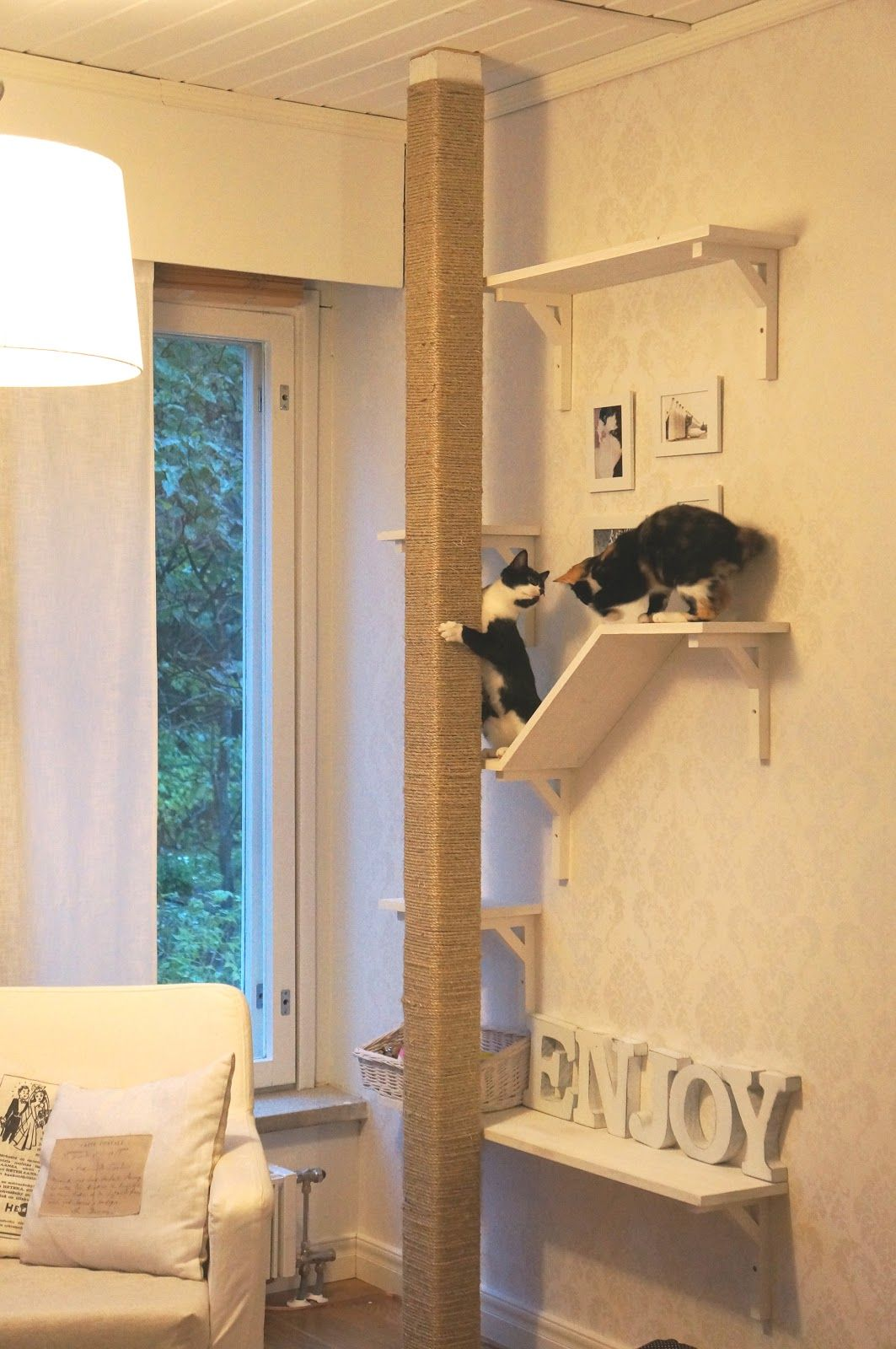 Cat Furniture Wall Creative Cat Scratch Post Shelving But If We Built It