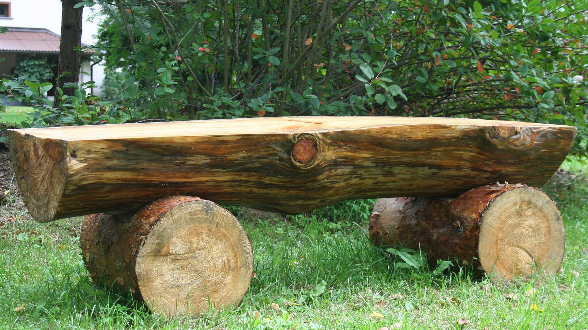 Cut down to make log bench and other